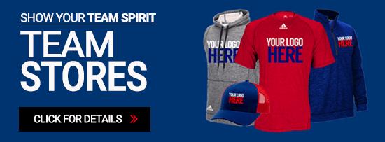 Team Spirit Store - Link